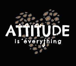 Atitude 8136